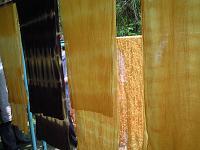 f:id:nagomusi:20120613122422j:image