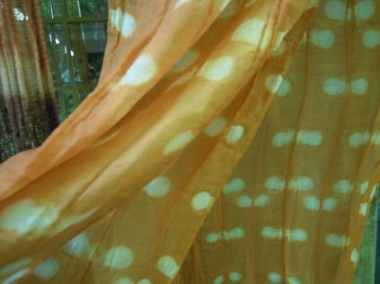 f:id:nagomusi:20120717142452j:image