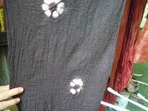 f:id:nagomusi:20120718121355j:image