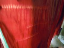 f:id:nagomusi:20120718121444j:image