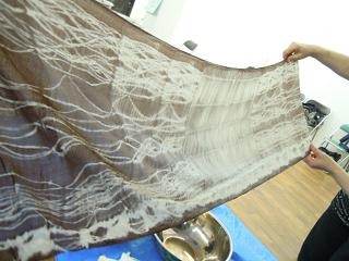 f:id:nagomusi:20120727123959j:image