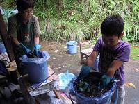 f:id:nagomusi:20120828122132j:image