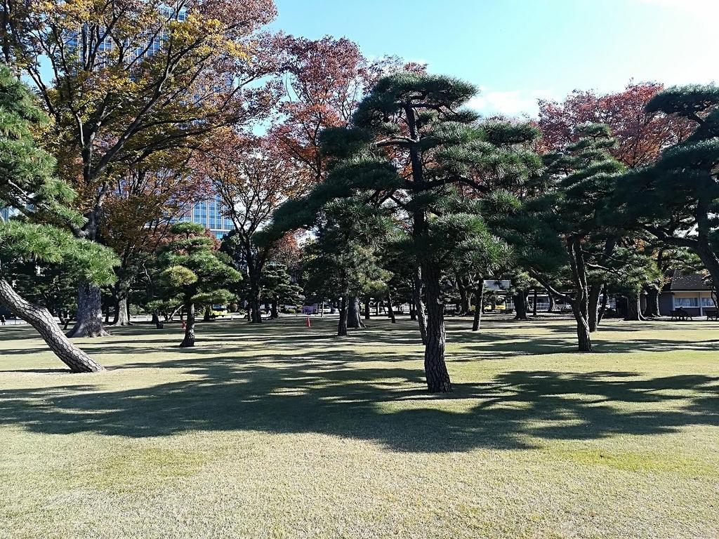 皇居前の芝生