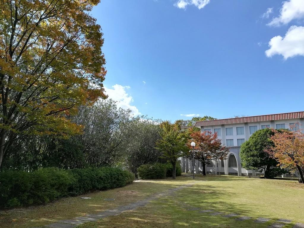 f:id:nagotaro:20181202074720j:plain