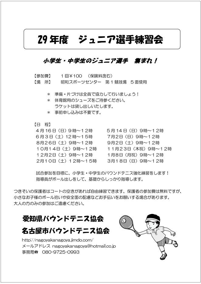 f:id:nagoyakanagoya:20161216200800j:plain:w200