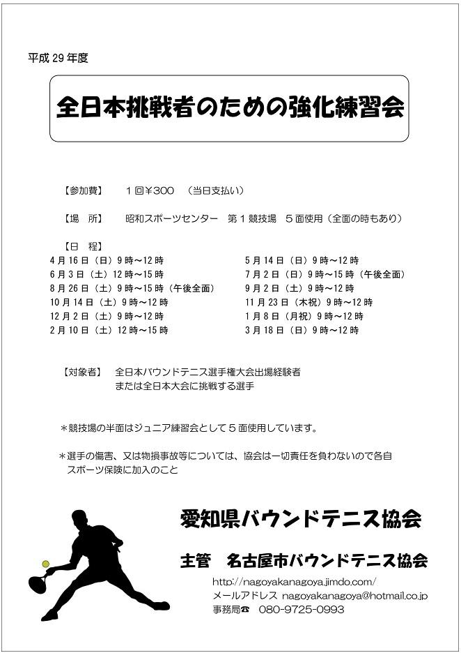f:id:nagoyakanagoya:20161216200807j:plain:w200