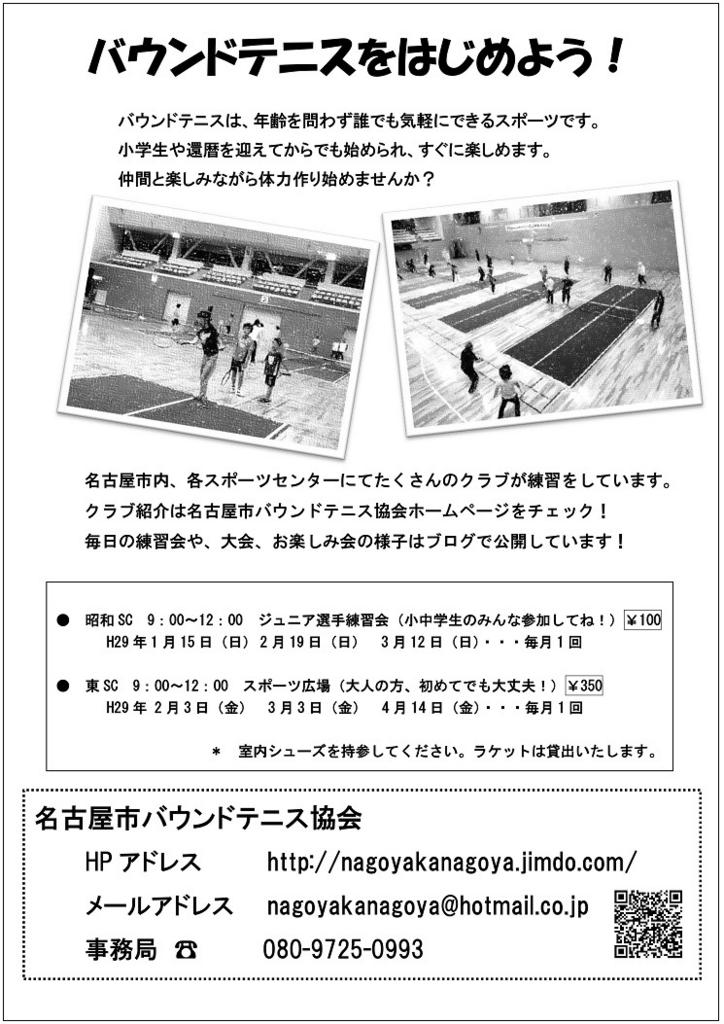 f:id:nagoyakanagoya:20161220071301j:plain:w250