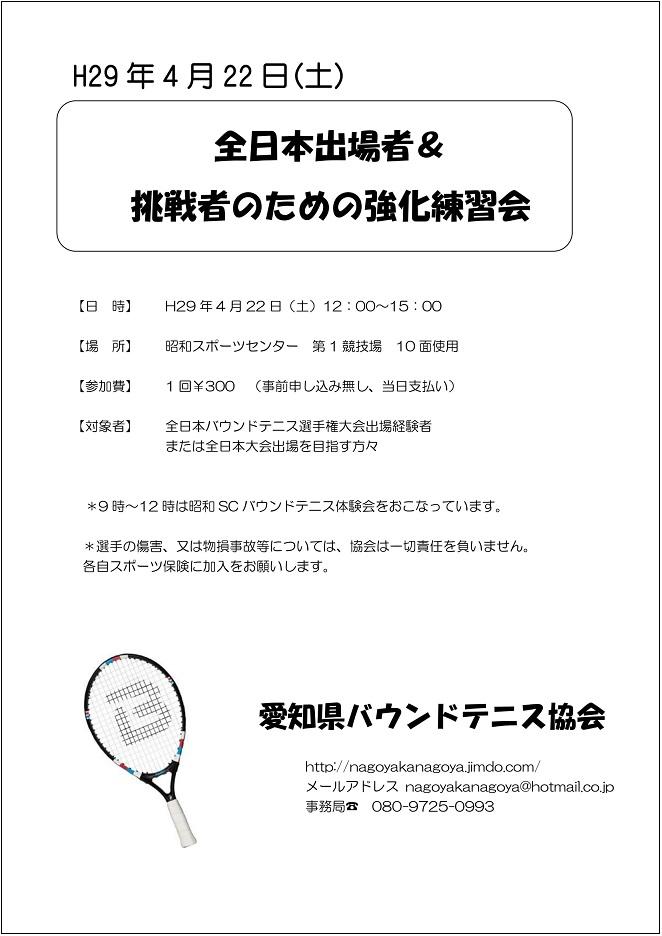 f:id:nagoyakanagoya:20170227093335j:plain:w250