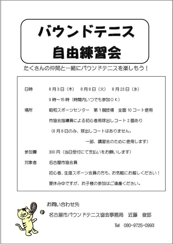 f:id:nagoyakanagoya:20170619142245j:plain:w200