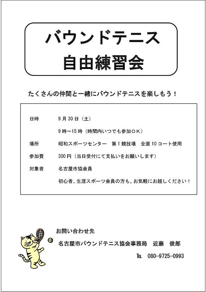 f:id:nagoyakanagoya:20170727103206j:plain:w200