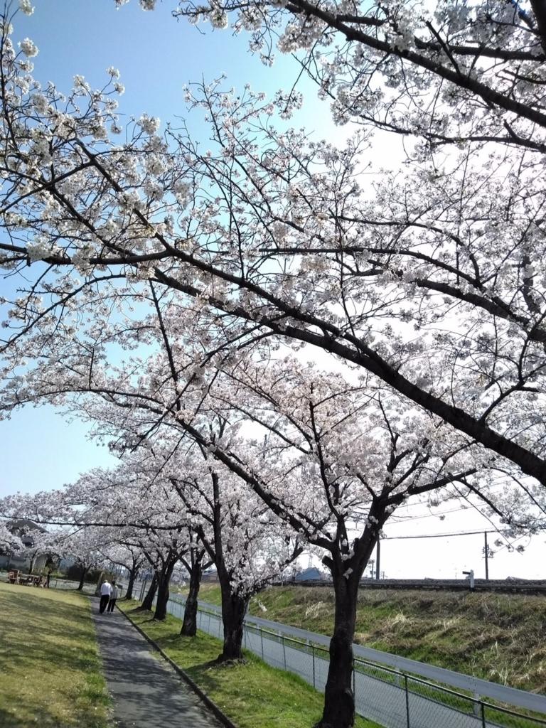 f:id:nagoyakanagoya:20180329210108j:plain:w300