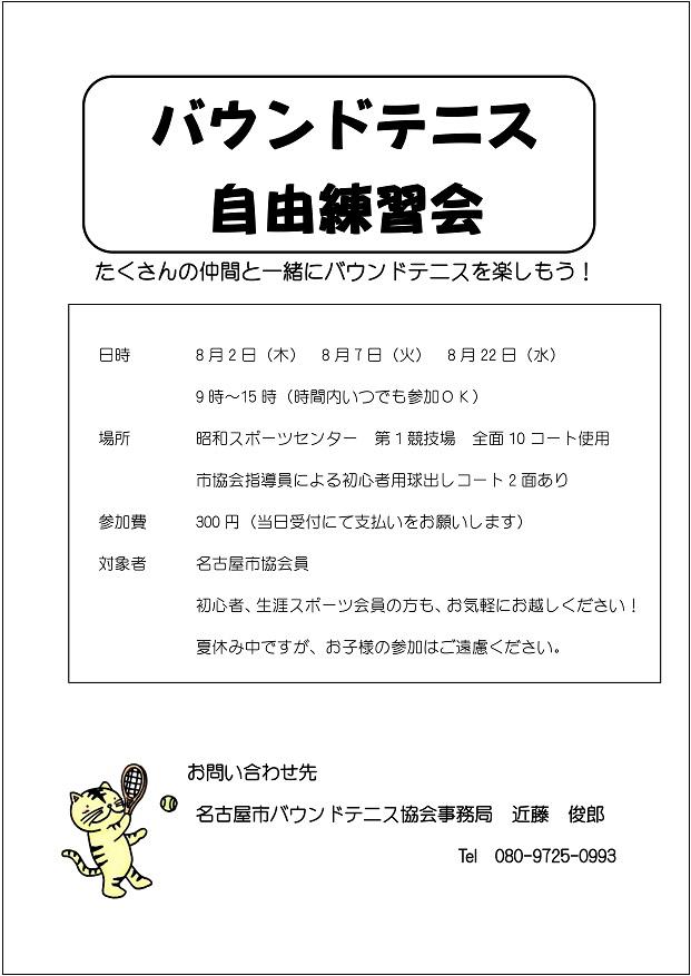 f:id:nagoyakanagoya:20180706164831j:plain:w300