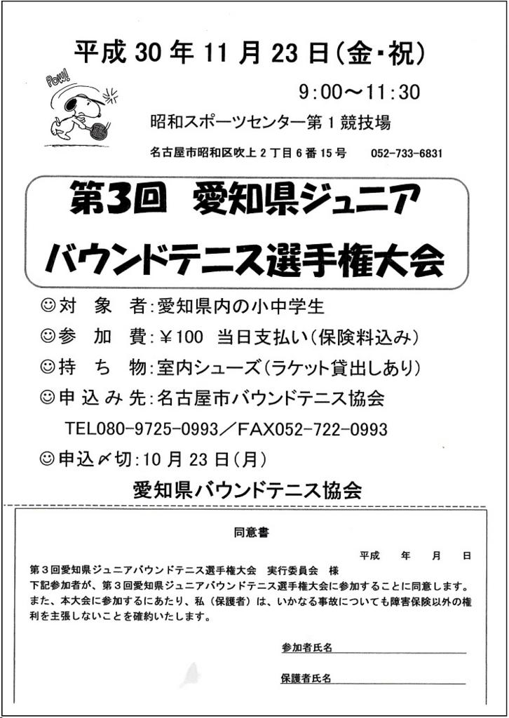 f:id:nagoyakanagoya:20180822160352j:plain:w250