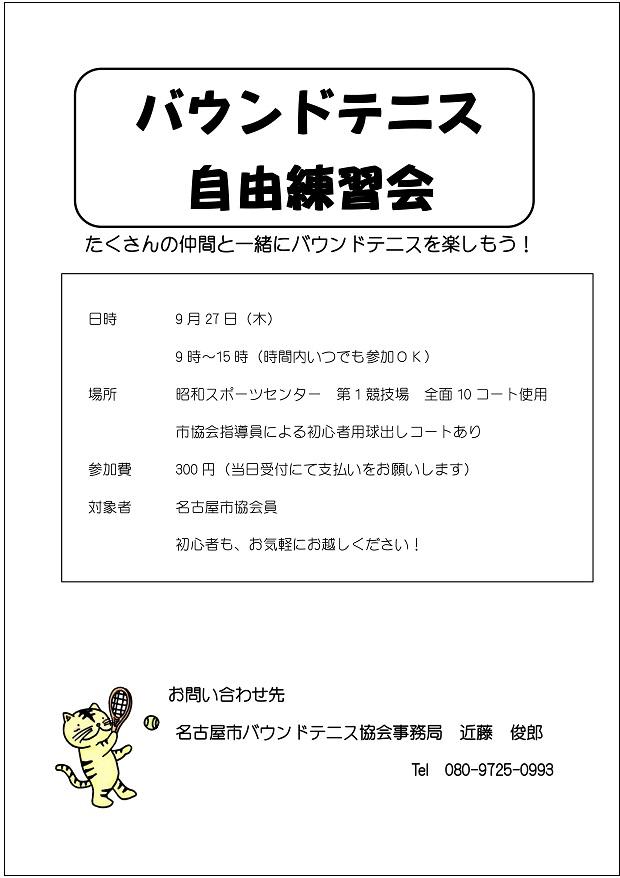 f:id:nagoyakanagoya:20180831173805j:plain:w250