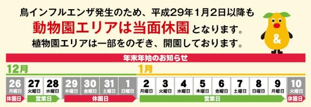 f:id:nagoyakinpen:20170104200029j:plain