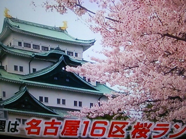 f:id:nagoyakinpen:20170319160655j:plain