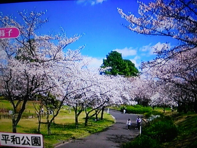 f:id:nagoyakinpen:20170326144133j:plain