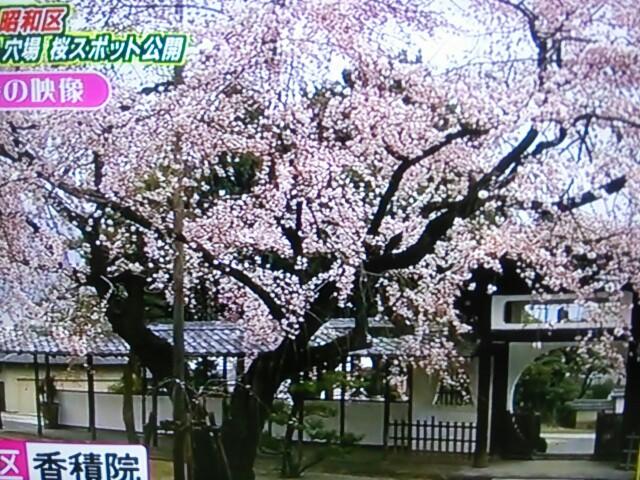 f:id:nagoyakinpen:20170326144203j:plain