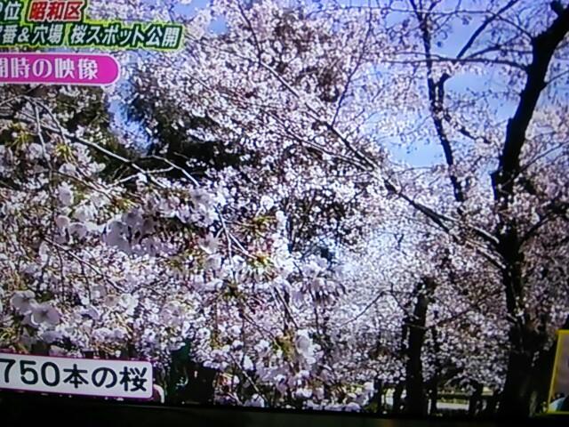 f:id:nagoyakinpen:20170326144248j:plain