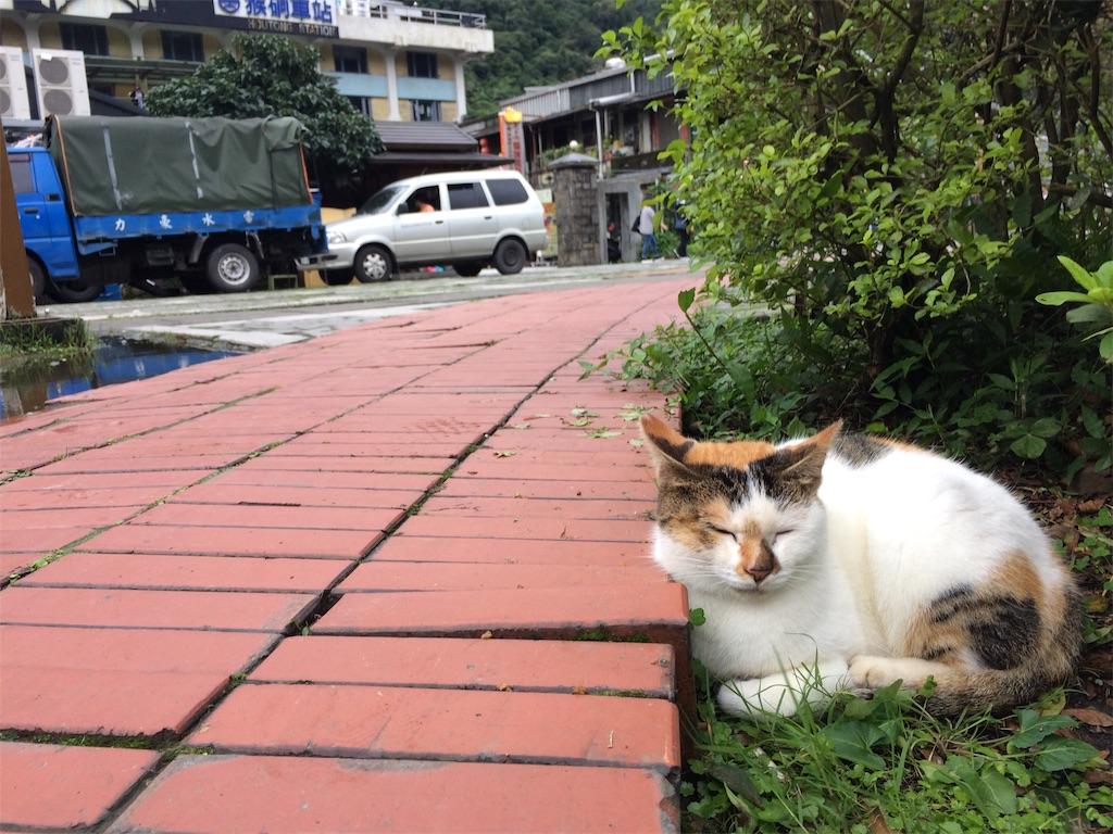 f:id:nagoyaman:20190107233451j:image
