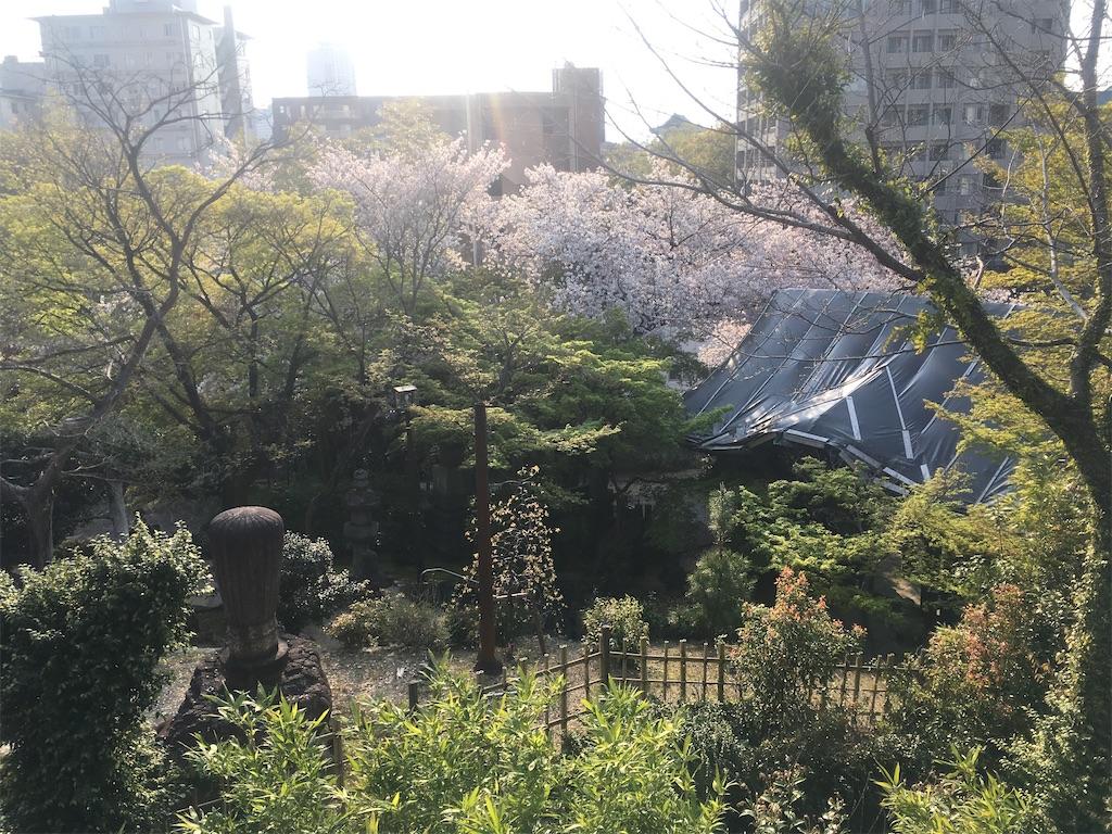 f:id:nagoyaman:20200603102555j:image