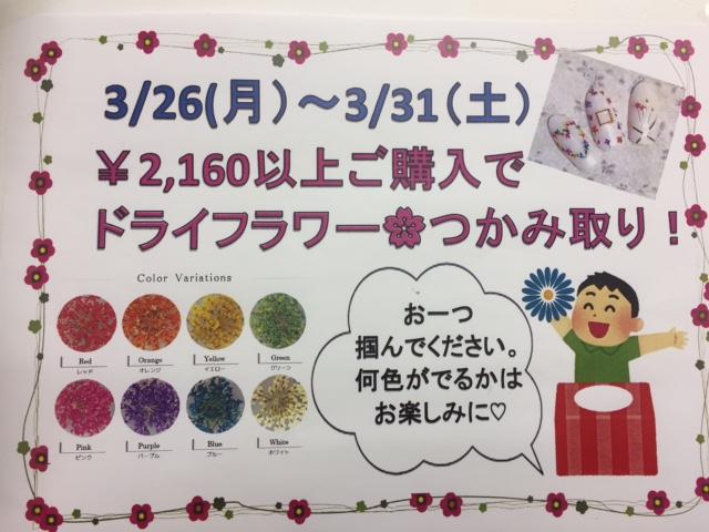 f:id:nailnes_hiroshima:20180313180412j:plain