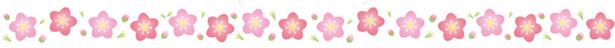 f:id:nailnes_hiroshima:20190219133701p:plain