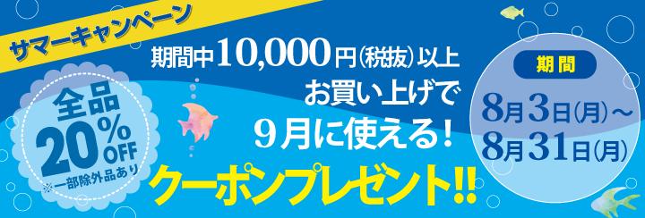 f:id:nailnes_hiroshima:20200807103132p:plain