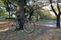[自転車]