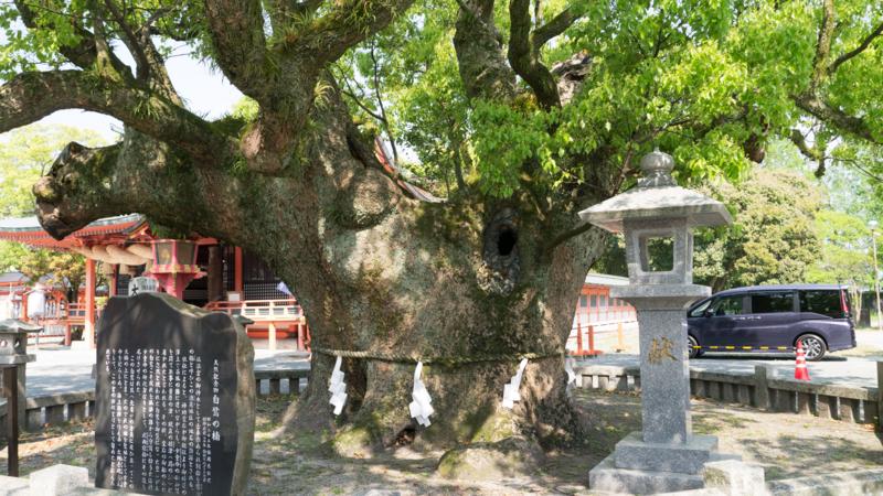 f:id:nakagawa_che:20170512220642j:plain