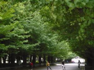 f:id:nakagawamasami:20090922143432j:image:left