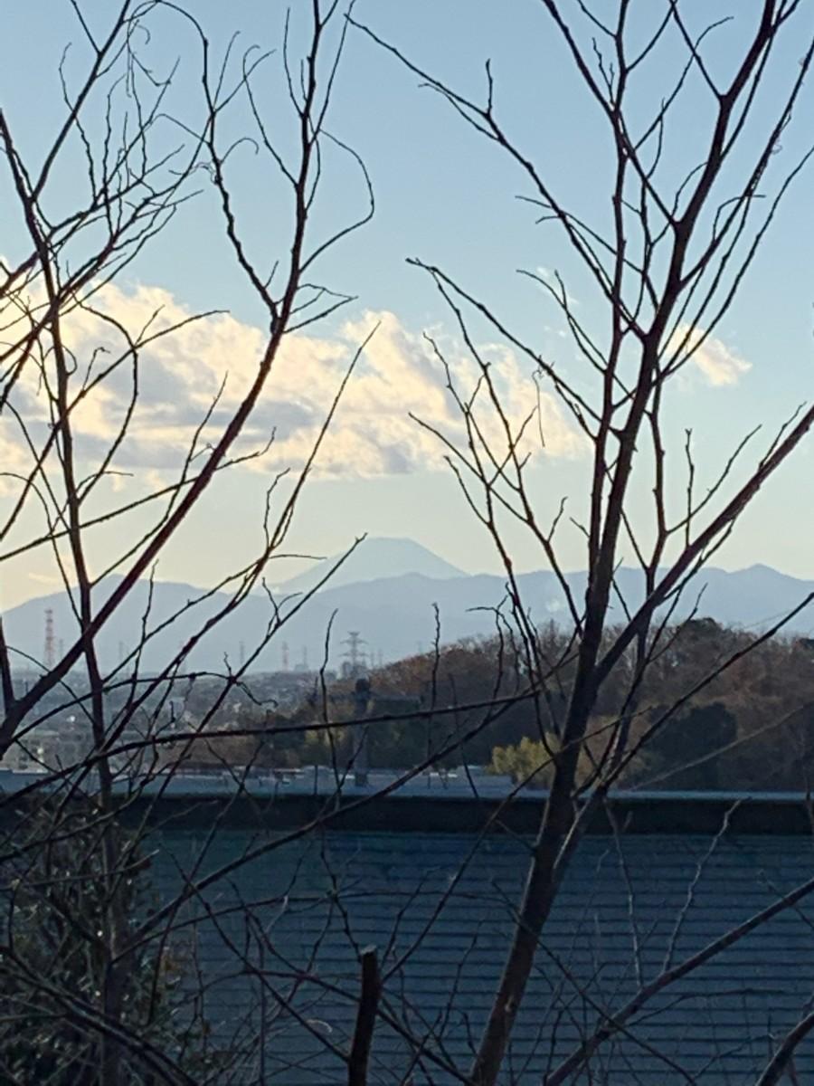 f:id:nakagawamasami:20210101235949j:plain