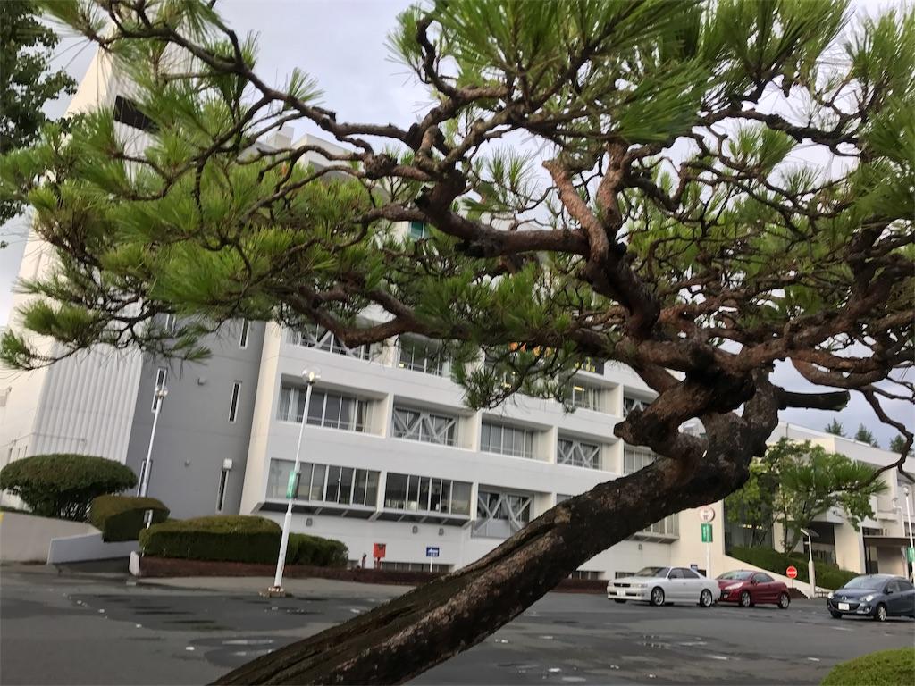 f:id:nakahiro28:20170724194250j:image