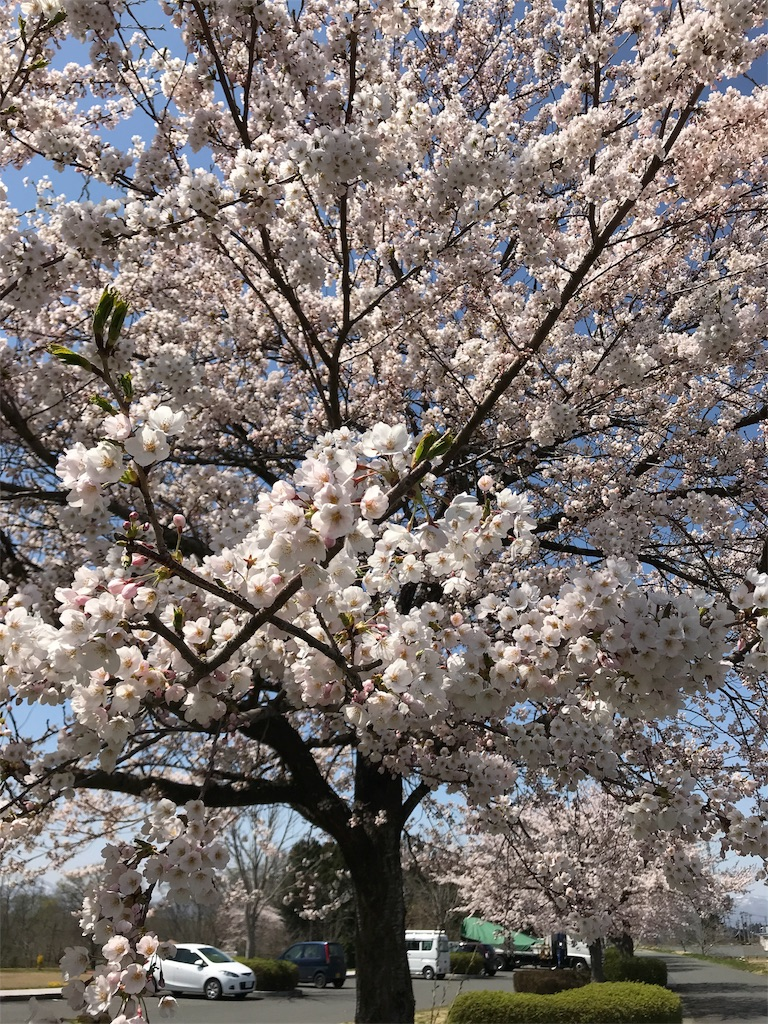f:id:nakahiro28:20180420134106j:image