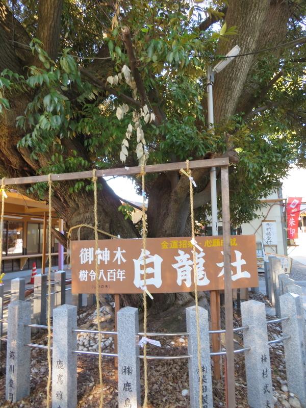 f:id:nakaimamarunosuke:20200104134941j:plain