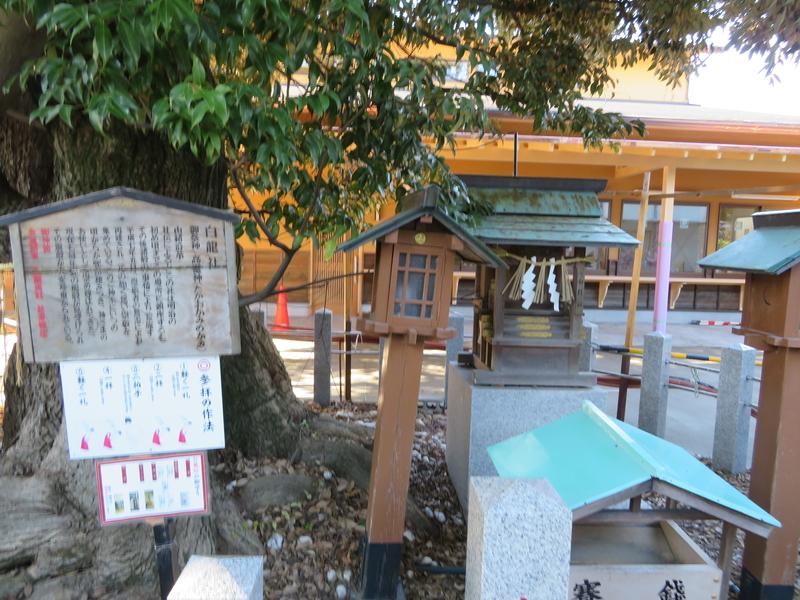 f:id:nakaimamarunosuke:20200104135619j:plain