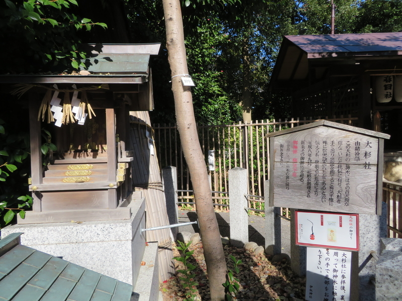 f:id:nakaimamarunosuke:20200104144519j:plain