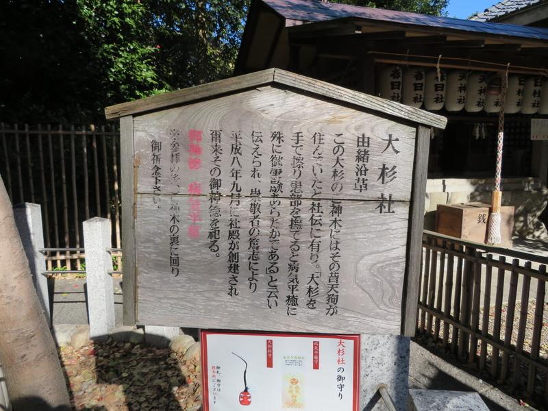 f:id:nakaimamarunosuke:20200104144623j:plain