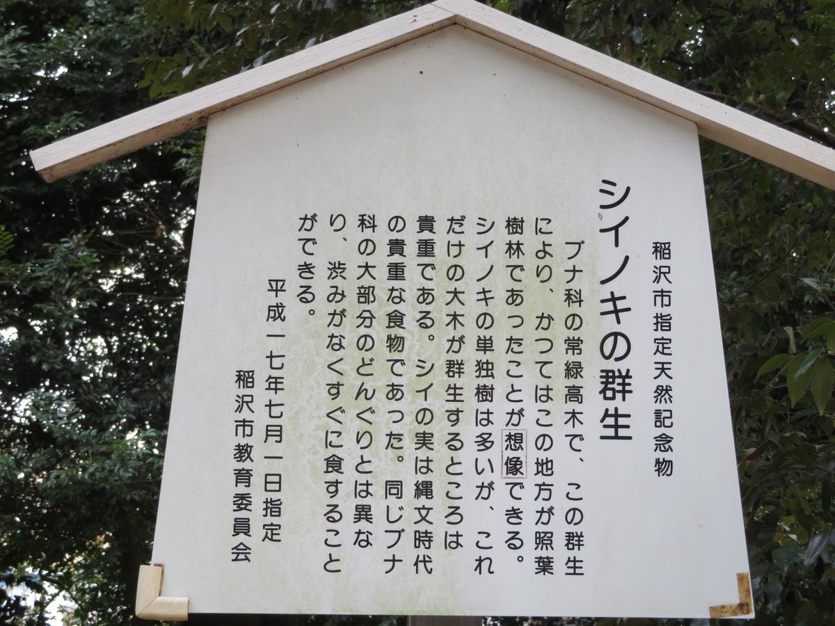 f:id:nakaimamarunosuke:20200201082820j:plain