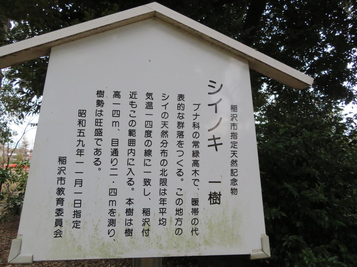 f:id:nakaimamarunosuke:20200202083745j:plain