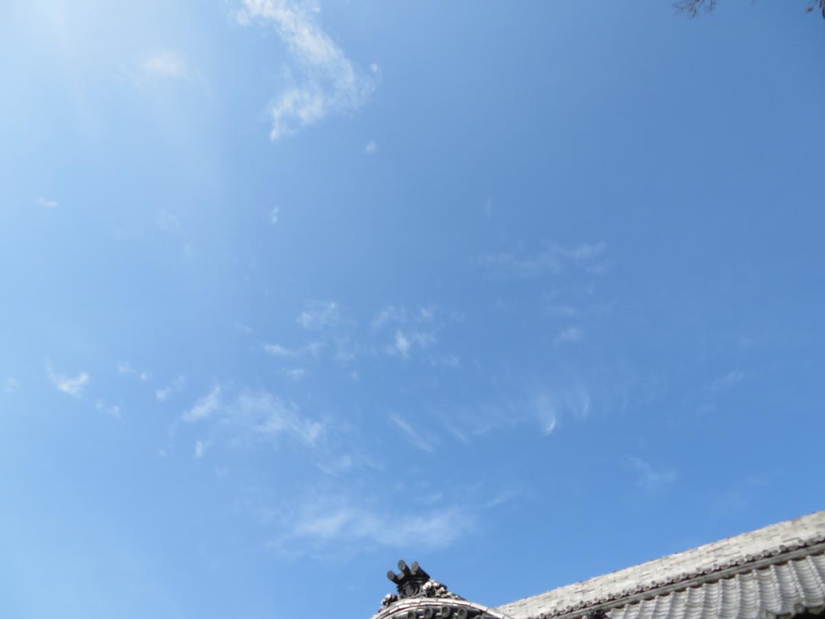 f:id:nakaimamarunosuke:20200301130524j:plain