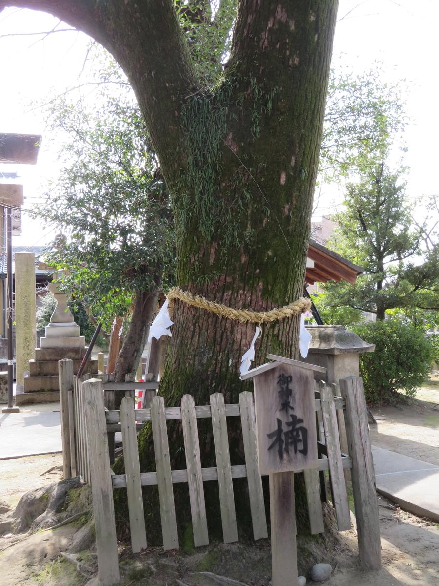 f:id:nakaimamarunosuke:20200301133032j:plain