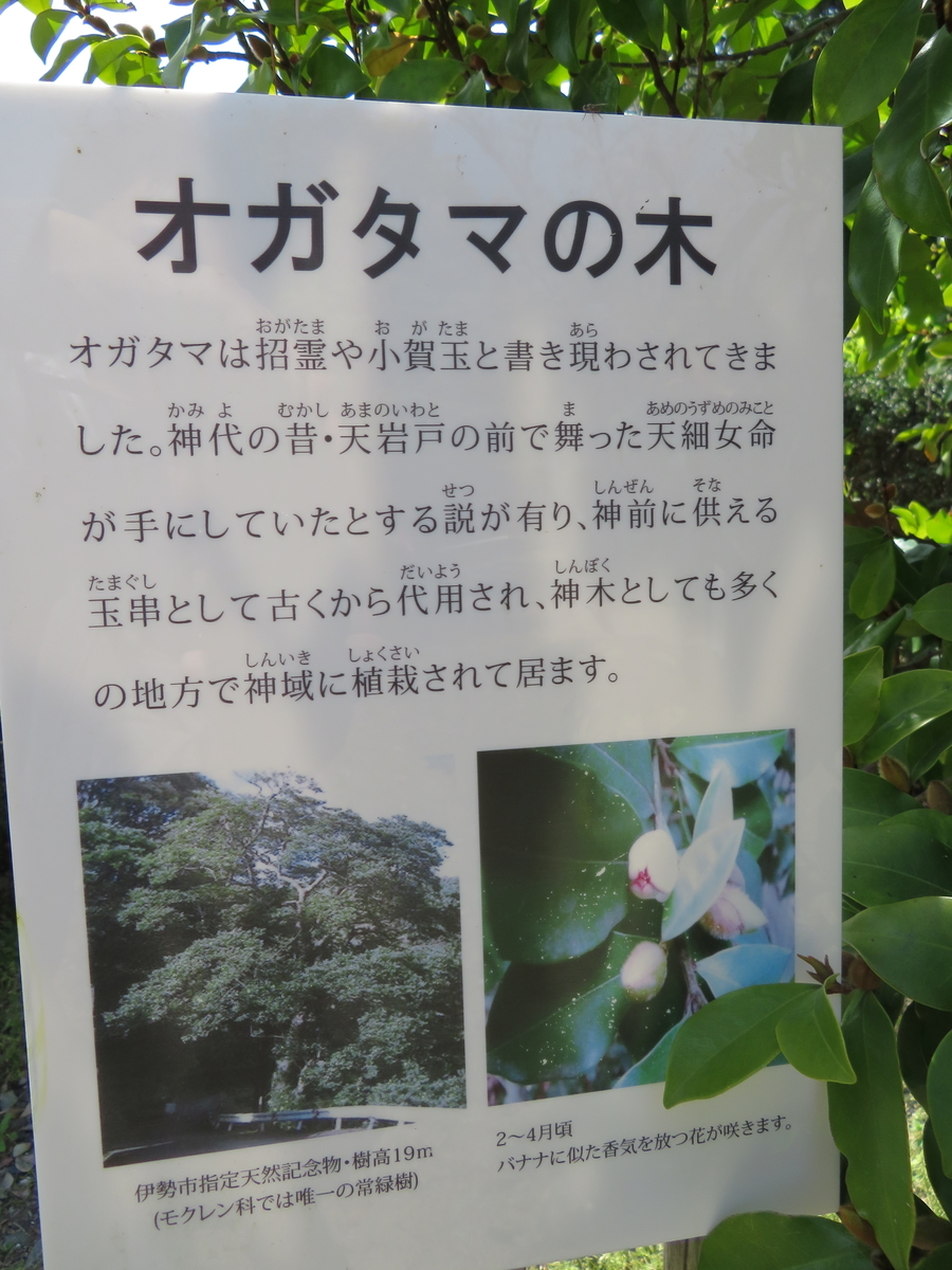 f:id:nakaimamarunosuke:20200413185139j:plain