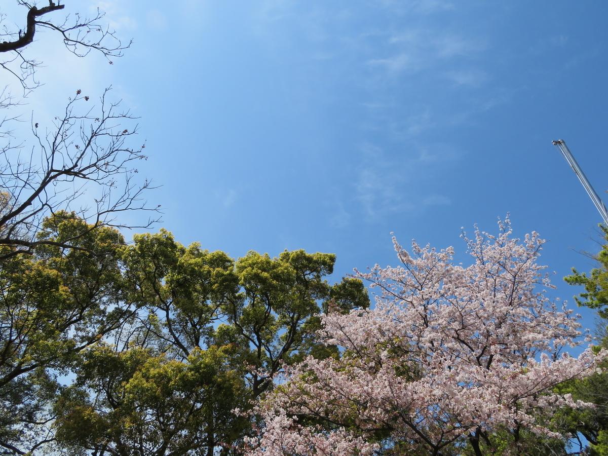 f:id:nakaimamarunosuke:20200415190940j:plain