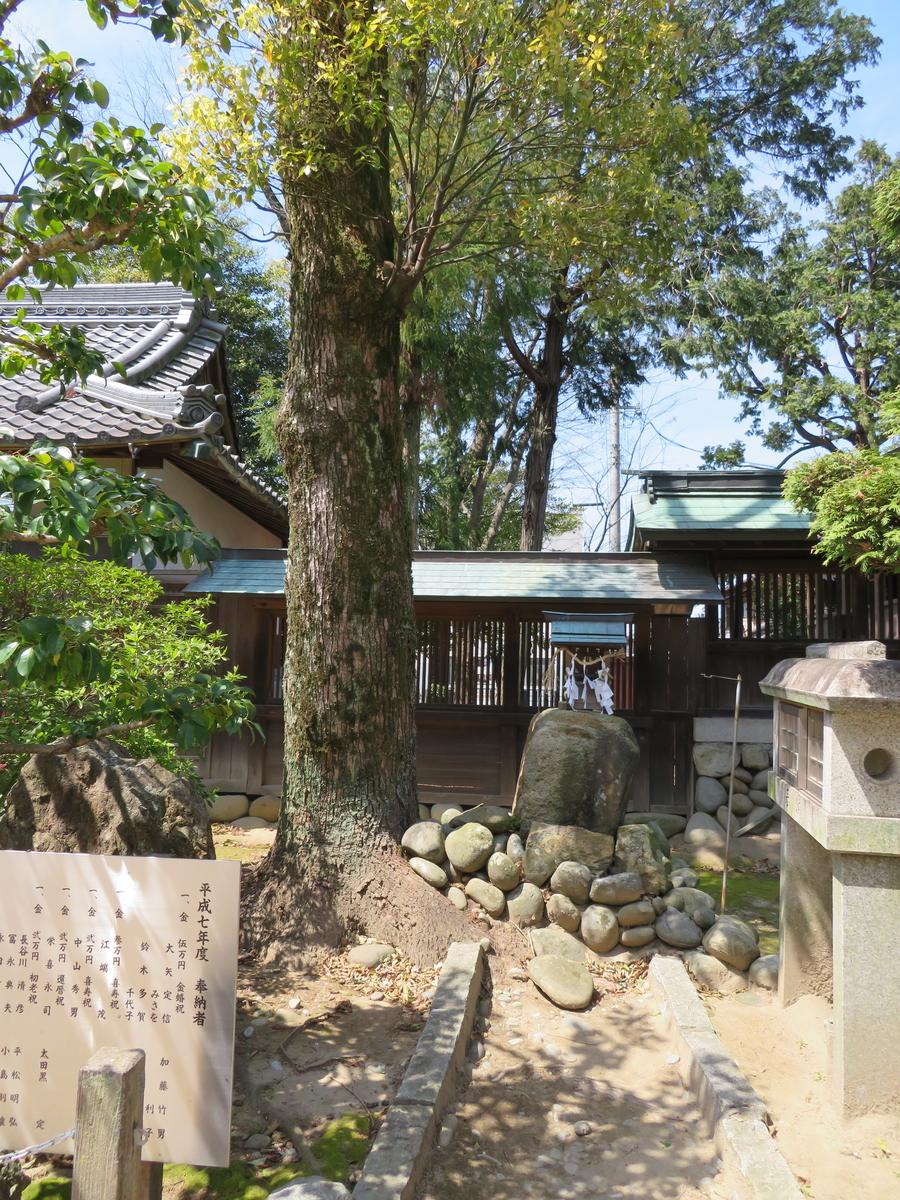 f:id:nakaimamarunosuke:20200416215300j:plain