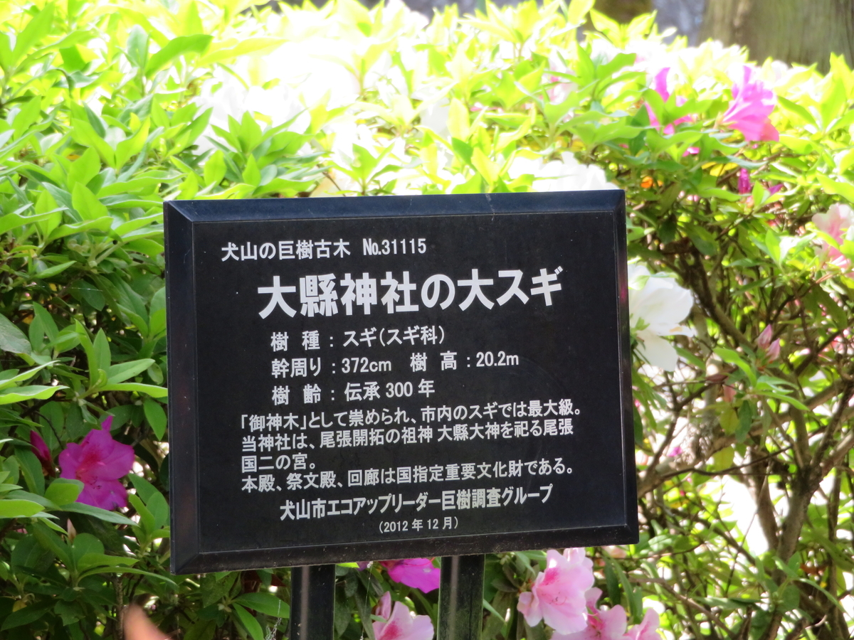 f:id:nakaimamarunosuke:20200502091212j:plain