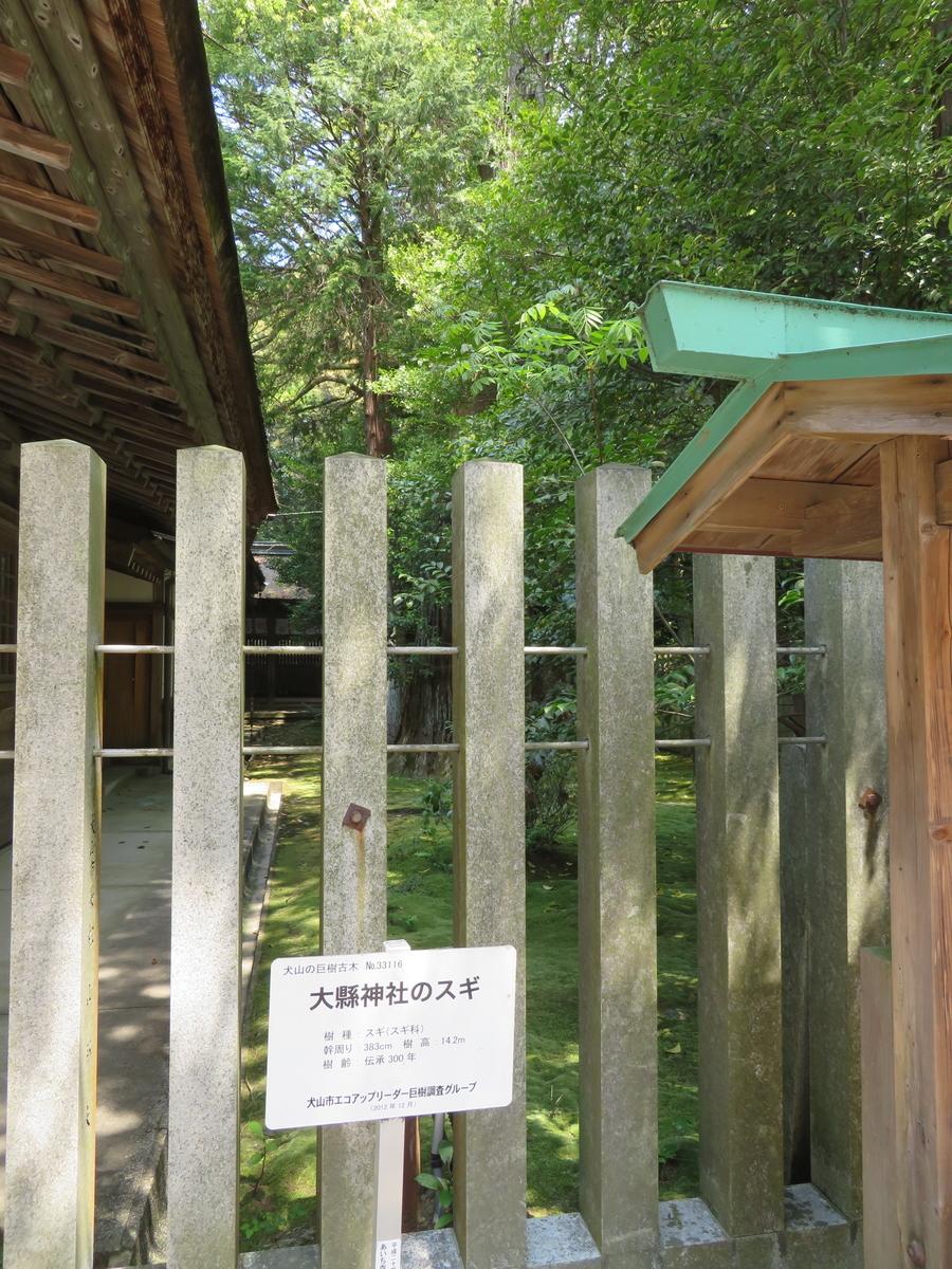 f:id:nakaimamarunosuke:20200502091257j:plain