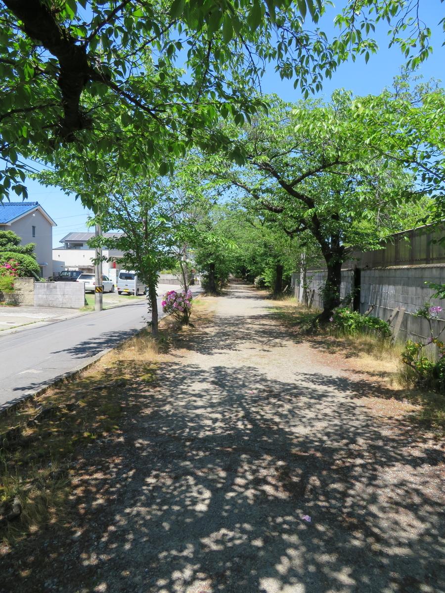 f:id:nakaimamarunosuke:20200507175120j:plain