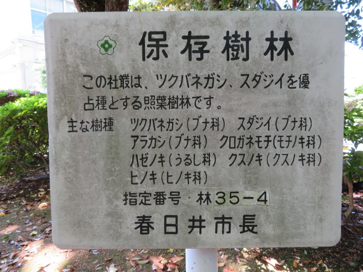 f:id:nakaimamarunosuke:20200517093947j:plain