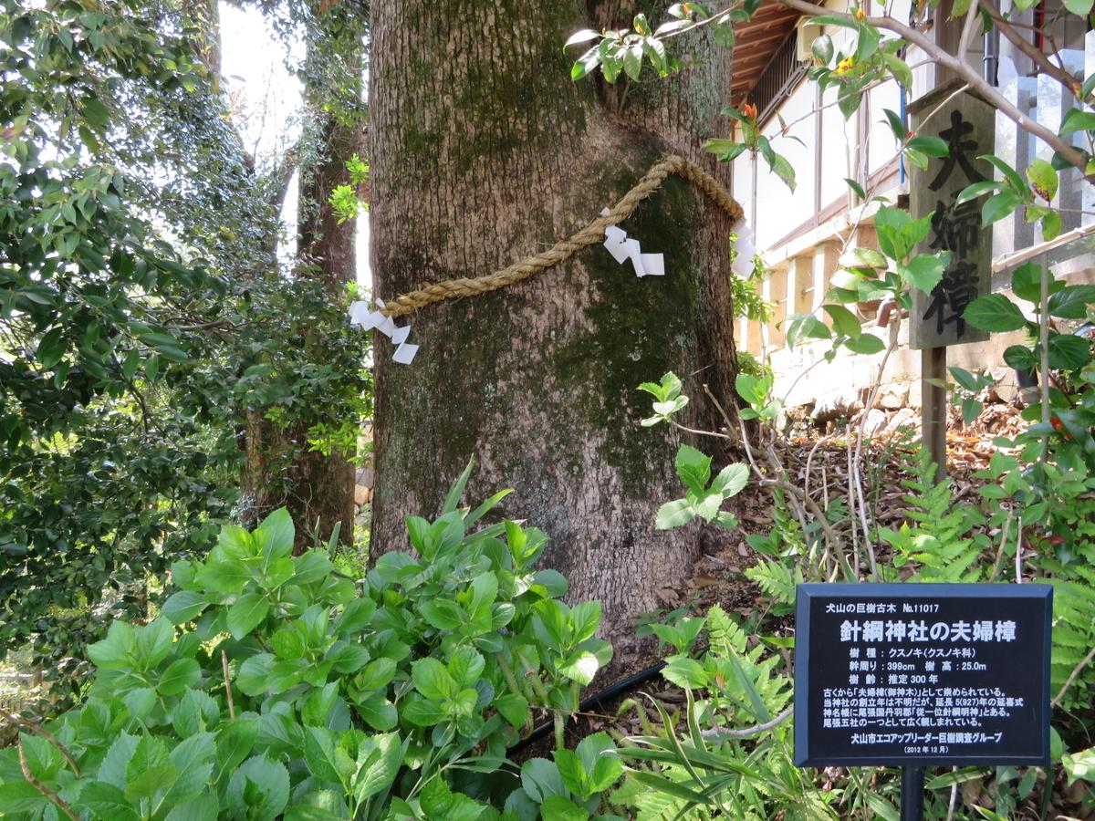 f:id:nakaimamarunosuke:20200523101308j:plain